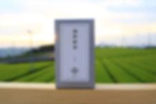 嬉野新茶1.jpg