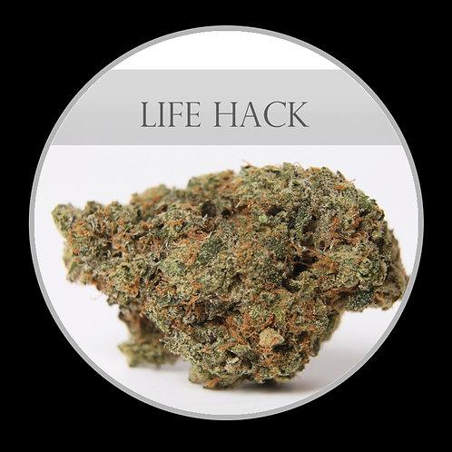 Life Hack AAA