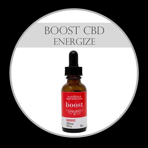 Boost CBD Tincture - Energize