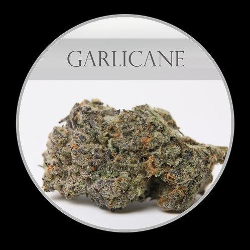 Garlicane AAAA