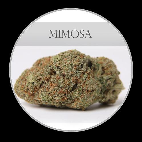 Mimosa AAA
