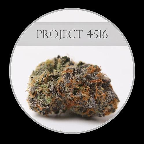 Project 4516 AAA