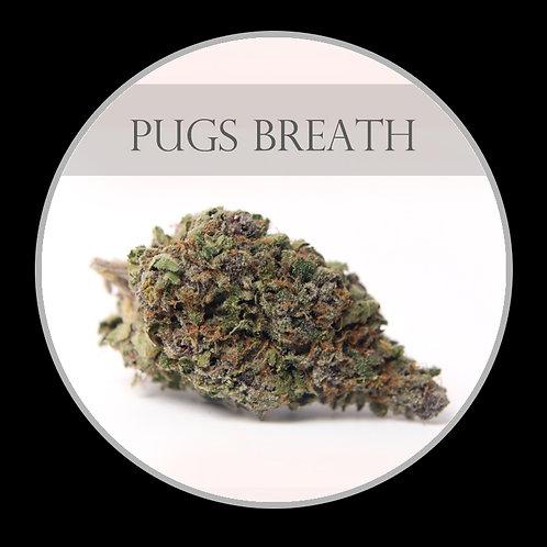 Pugs Breath