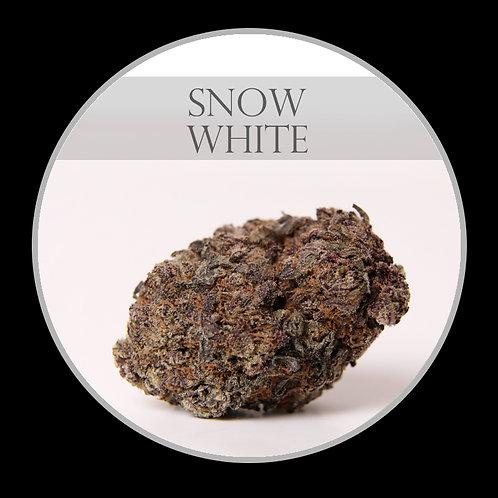 Snow White AAA