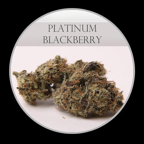 Platinum Blackberry