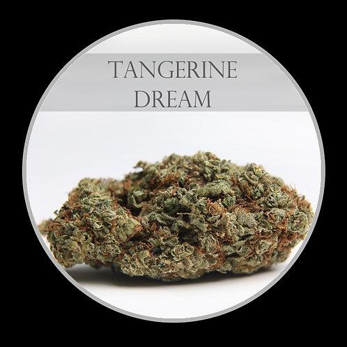 Tangerine Dream AAA