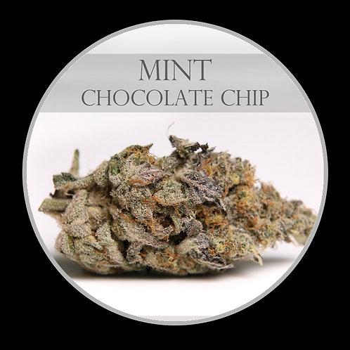 Mint Chocolate Chip AAAA