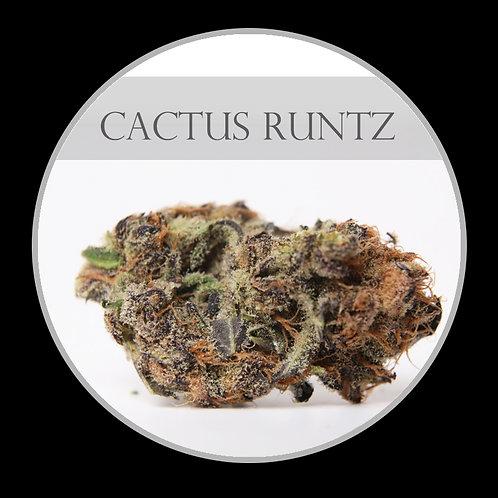 Cactus Runtz AAAA
