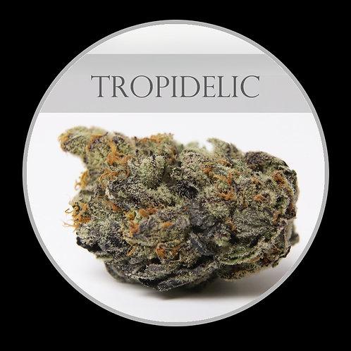 Tropidelic AAAA