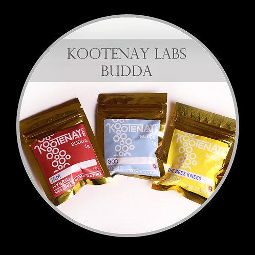 Kootenay Labs Budda