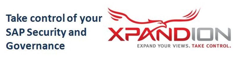 a_services_xpandion_sap_roles_perfiles.j