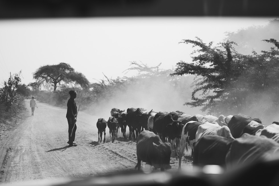 Tanzania-0020.jpg