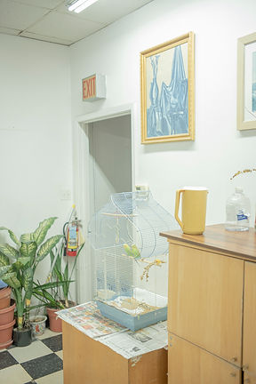 Home Is Everywhere and Often Nowhere series:Jinwoo Hwon Lee이훤