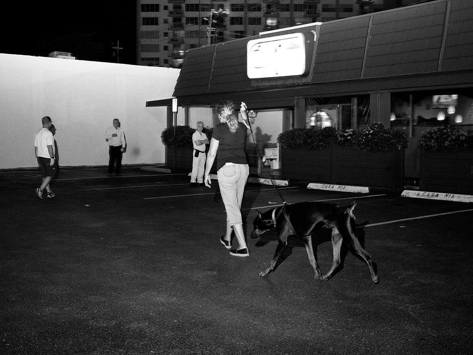Lady walking dog, Miami.jpg