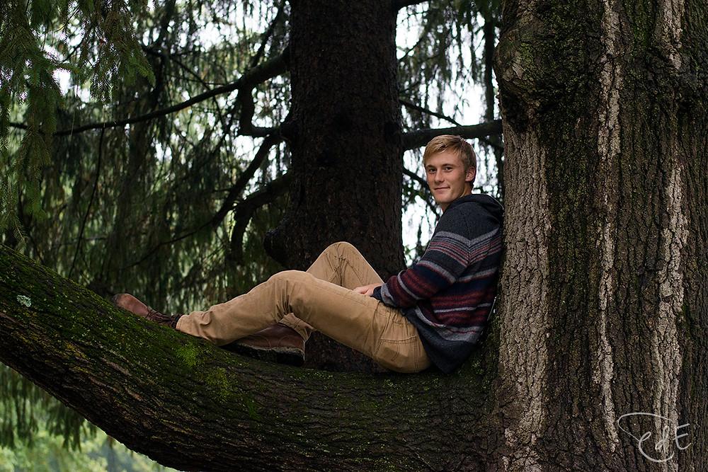 Portrait of high school guy sitting in tree