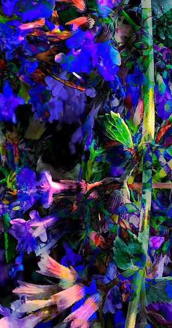 """Plantplexity"" by Darren Thompson Jr."
