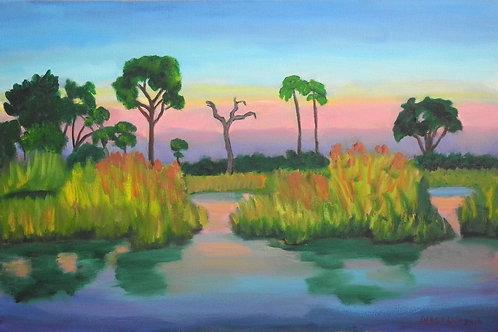 """""""Okavango Delta, Botswana"""" by Darcy Lynn"""