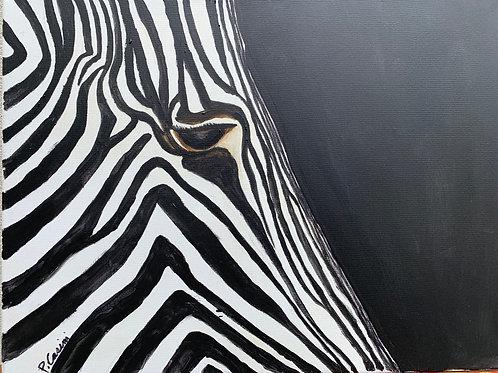 """Zebra"" by Peter Casini"
