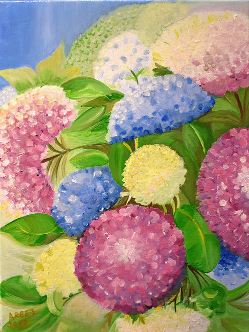 """Colorful Hydrangea Flowers""by Areej Alqaysi"