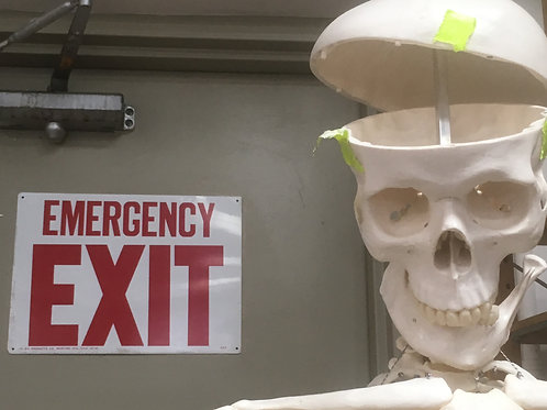 """Emergency Exit"" by Marilyn Lowney Johnson"