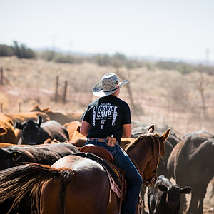 LX Ranch Spring Branding