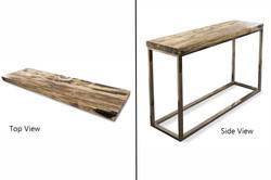 Petrified Wood Slab Console Table