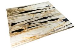 Petrified Wood Slab Coffee Table