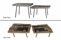 Petrified Wood Two-Tier Table