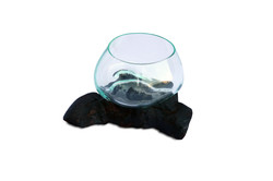 Mini SIngle Terrarium with Black Base