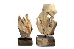 Natural Root on Stand Set of 2