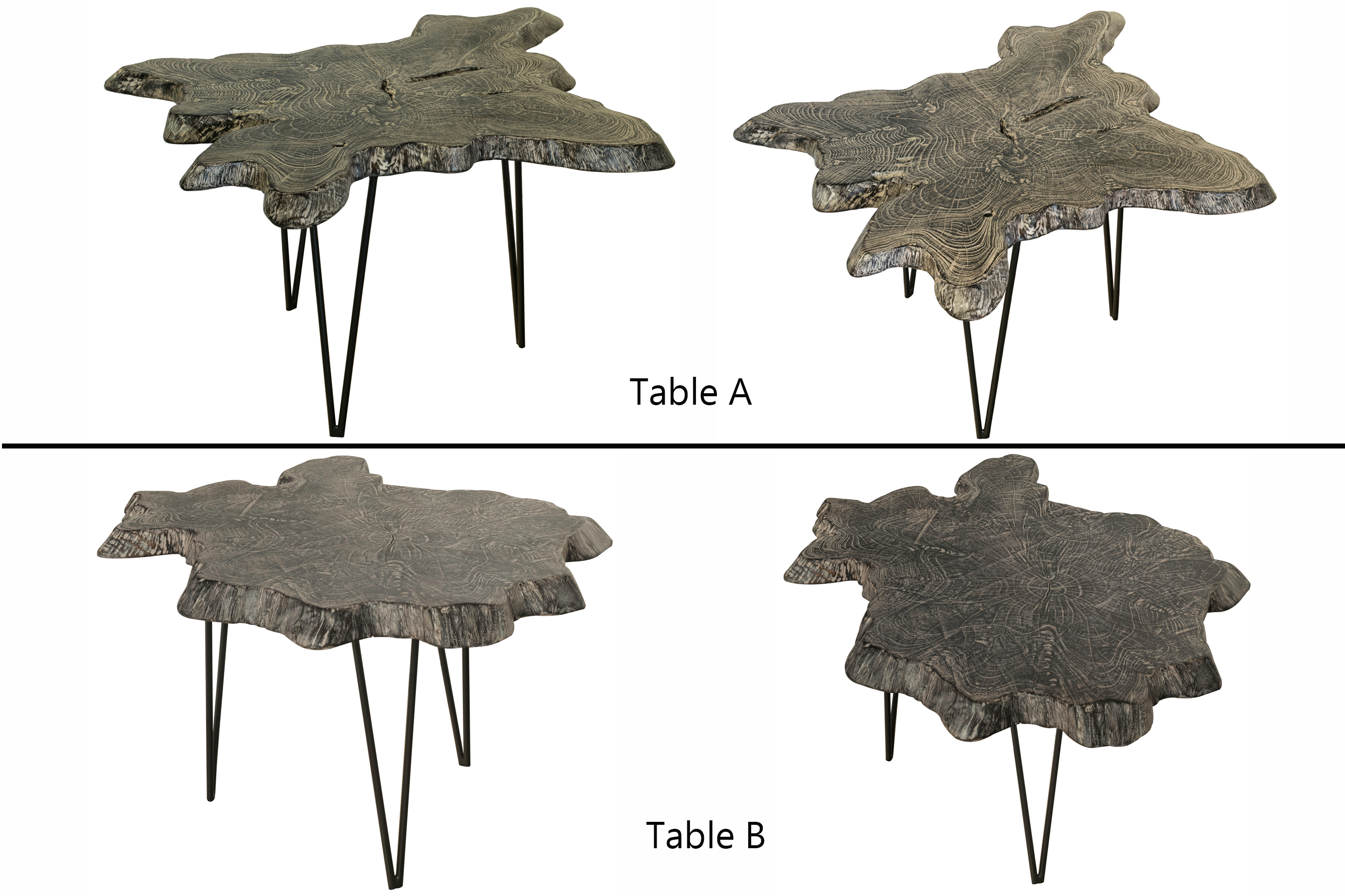 Black/White Teak Root Slab Table