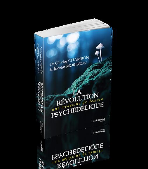 LaRevolutionPsychedelique PROJET 3D.png