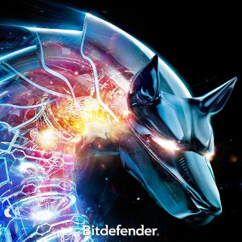 IngenuIT is now a Bitdefender partner!