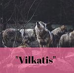 vilkatisPP.jpg