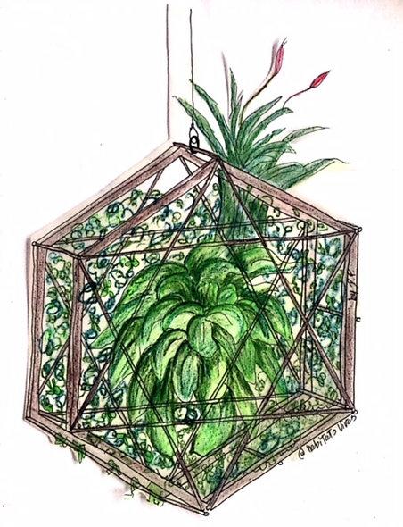 Jardín Colgante hexagonal