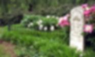 Scatter.Garden.adj_.jpg