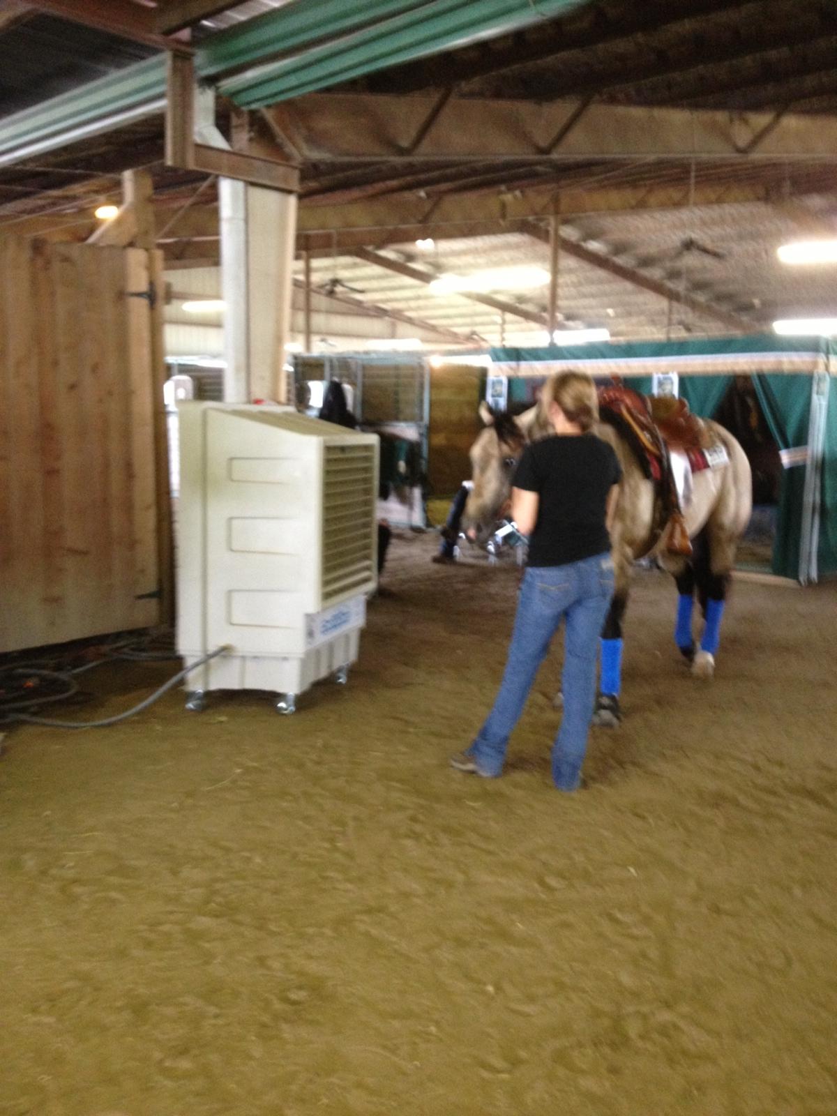 Cooling Horses Too