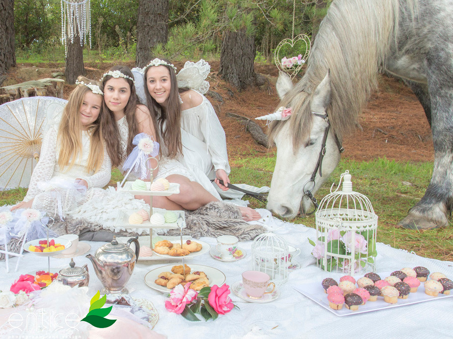 Classic Carriage Drives Fairy Party with