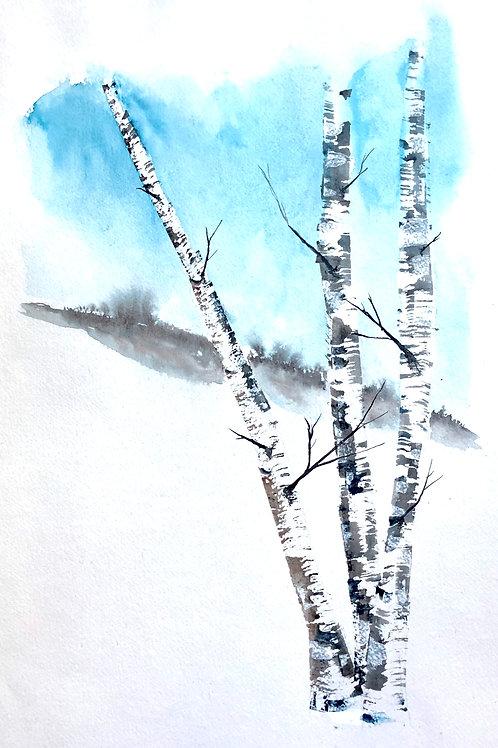 Bouleaux en hiver 32x52 cm