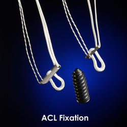 ACL Fixation
