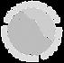 IIA-Round-Logo_edited.png