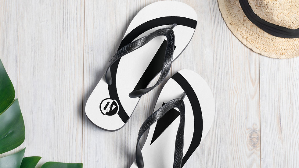 IN2U - Flip-Flops