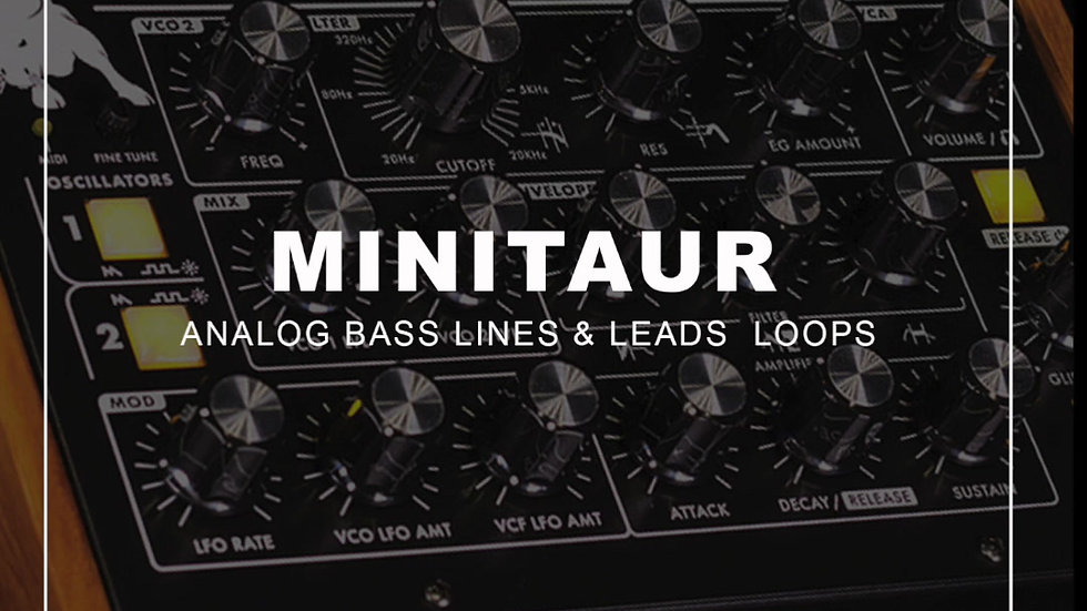 MOOG Minitaur Pack