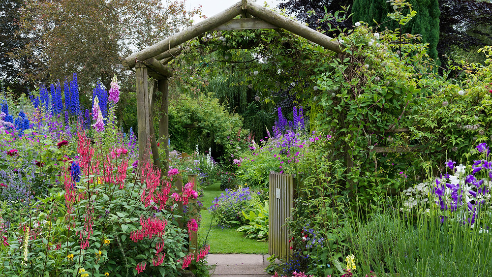 Entrance to a charming and romantic cottage garden with wall flowers including delphiniums and other cottage gardens style plants