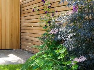Fence and studio