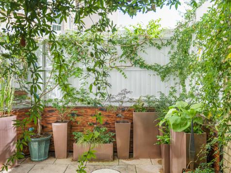 Small but stylish garden