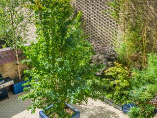 Top view of a modern coutryard garden design in cambridge