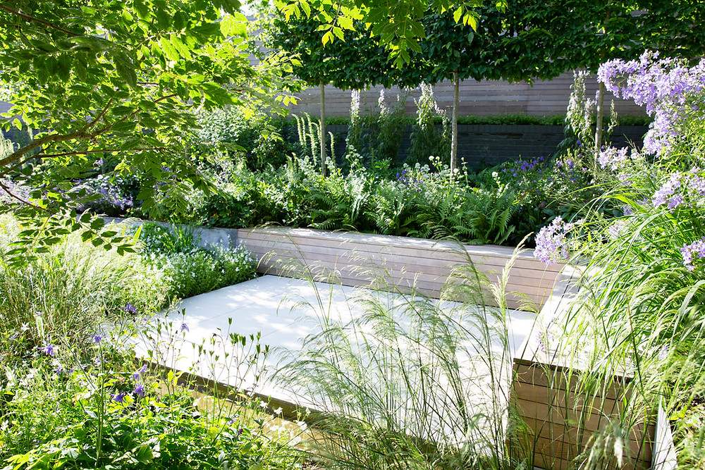 A wildlife friendly naturalistic style garden with raised beds constructed from timber
