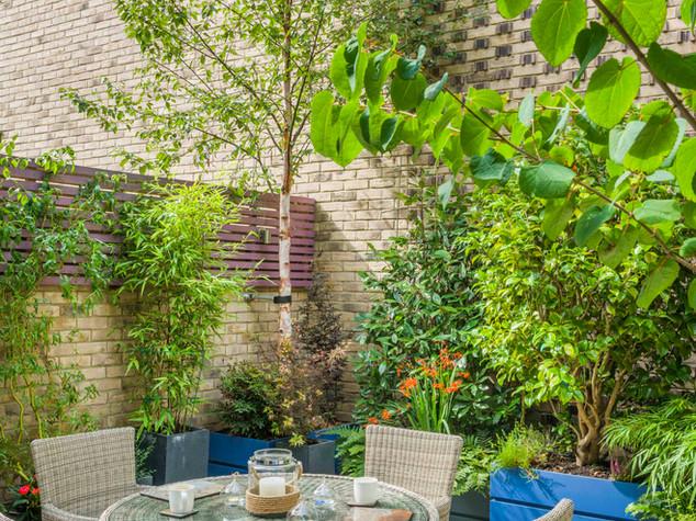 Large birch trees and bamboos in modular fibreglass planters in a modern garden design scheme