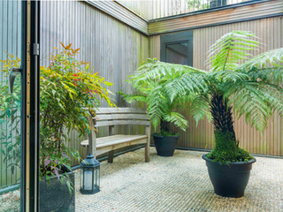 Garden design for a modern courtard with lantern, wooden bench, cedar cladding and metal mesh flooring